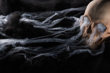 spooky human skull on black background