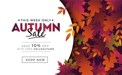 Sale banner with foliage for autumn promotions vector illustration. Profitable proposition save 10 percent this week only. Landing page with fall leaves and shop now button. Advertising concept