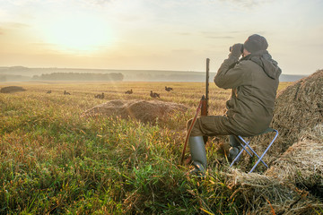 Hunter with a binoculars and a hunting gun in the autumn. The man is on the hunt at dawn.