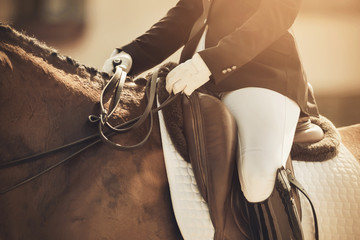 A rider riding a horse, holding his reins, participating in dressage competitions on a Sunny day.
