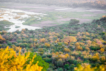 Foto auf AluDibond Elefant Sunset over the Olifants river in the Kruger National Park, South Africa.