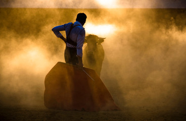 Spanish toreador fighting a heifer during one summer evening in a tentadero