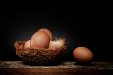 Egg is beneficial to the body