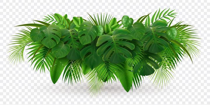 Tropical Leaves Bush Composition