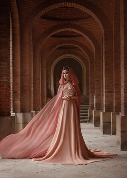 A luxurious lady in a long pink dress in a road coat with a hood is walking along the old castle corridor. The elven queen. The fabric of the train is flying, waving. Art Conspiracies and intrigues.