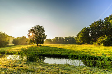 Beautiful backlight spring landscape picture with warm colours of sunrise in the nature park Heempark and along Kromme Aar in Alphen aan den Rijn