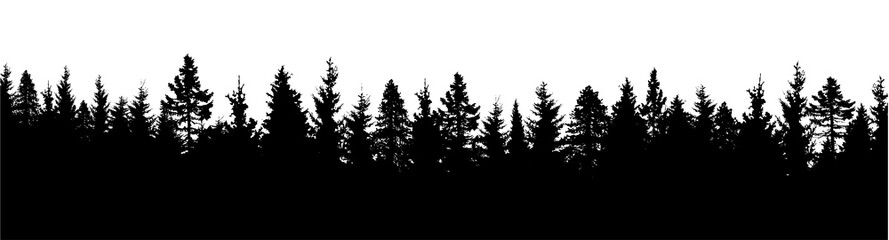 Forest silhouette. Wood background. Vector illustration Wall mural