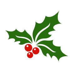 Mistletoe icon vector.