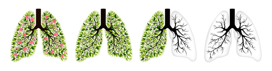 Human lungs. Respiratory system. Healthy lungs. Light in the form of a tree. Line art. Drawing by hand. Medicine. Vector graphics