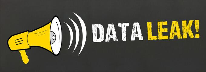 Data Leak!