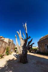 Iconic burnt cypress in the courtyard of the Arkadi Monastery, Crete, Greece