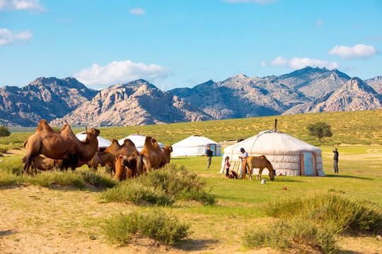 Mongolian tent near Little Gobi landscape