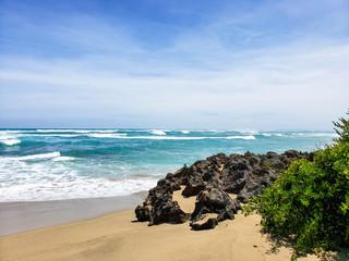 Tropical natural beach in the Caribbean
