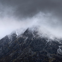 Recess Fitting Gray traffic Stunning detail landscape images of snowcapped Pen Yr Ole Wen mountain in Snowdonia during dramatic moody Winter storm with birds flying high above