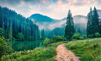 Misty morning scene of Lacu Rosu lake. Foggy summer sunrise in Harghita County, Romania, Europe....