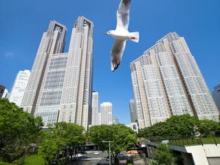 Fototapete - 新宿高層ビル街とカモメ