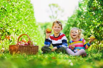 Happy children collect apples in the garden