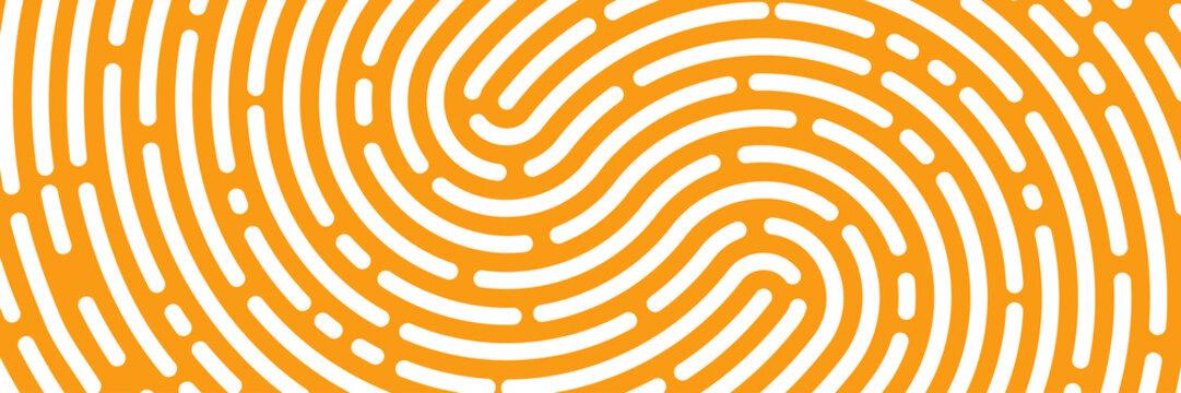 fingerprint background, maze, white print