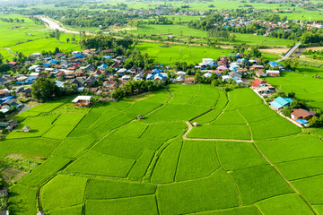 Top aerial view of rural villages and agriculture in rice fields.