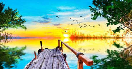 Foto auf Acrylglas Gelb embarcadero entre los arboles del lago