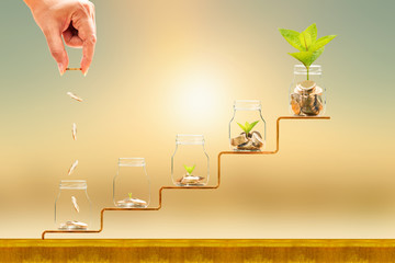 Investor hand hold and drop a gold coin in the five bottle and plant growing on golden steps on sunlight background, Business investment and saving money concept.
