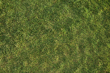 Top view of artificial green grass on soccer or football field. Outdoor image of sunlit mowed lawn in garden, yard or park. Shadow, sunny day. Spring, nature, landscape and summertime concept