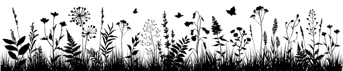 Background with black silhouettes of meadow wild herbs and flowers. Wildflowers. Floral background. Wild grass. Vector illustration.