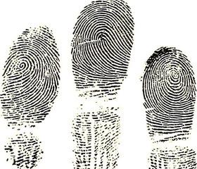 Fingerprint and Finger Print Vectors