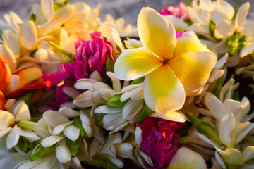 Close-up of a bouquet of tropical flowers used for a destination wedding with a sandy beach in the background