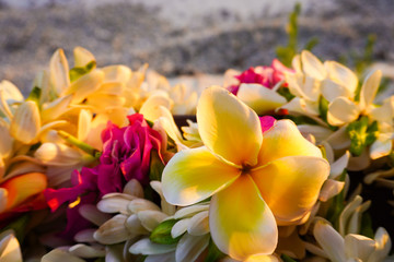 Close-up of a lei of tropical exotic flowers above a sandy beach  in French Polynesia in the South Pacific