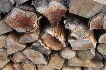 冬に使う薪を集めた写真