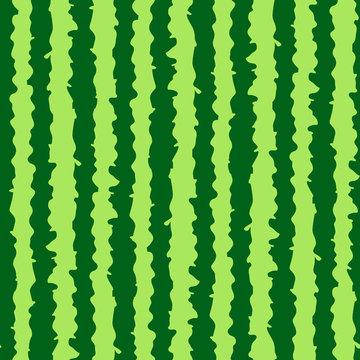 Watermelon realistic texture seamless pattern. Green stripes watermelon background.