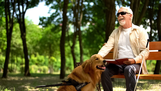 Cheerful blind man holding book and stroking assistance dog, enjoying life
