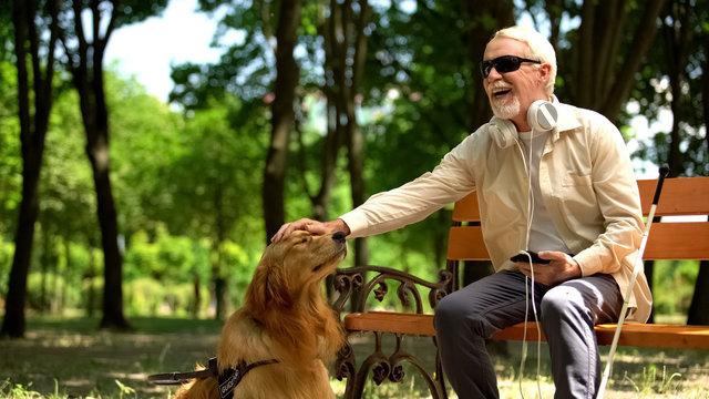 Blind man with earphones stroking dog, full life of impaired, enjoying time