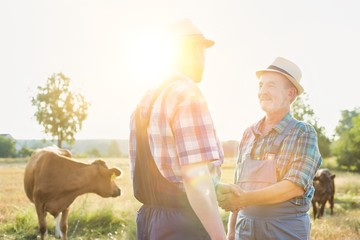 Farmers shaking hands in farm with yellow lens flare in background
