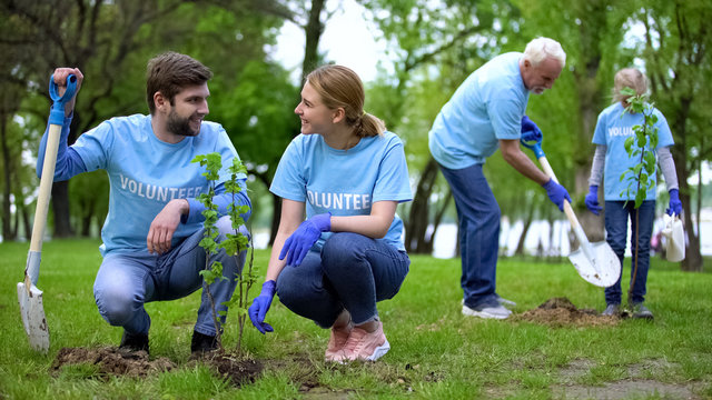 Group of eco volunteers planting tree sapling in public park, nature care