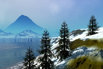 Coniferous trees, an alpine landscape, snow on the ground and a big mountain in the background.