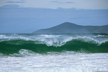Wall Mural - Powerful waves with Cape Hawke background