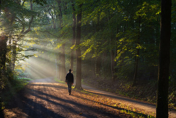 Man walking in a lane with the sunlight breaking through the trees. Fototapete