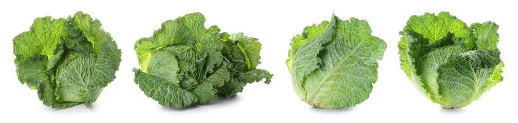Set with savoy cabbage on white background