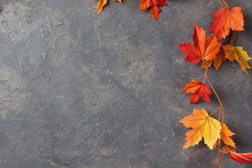 Autumn leaves over stone background, copy space, top view Wall mural