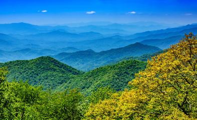 Scenic Landscape of the Blue Ridge Mountains