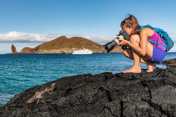 Foto auf AluDibond Grau Verkehrs Galapagos tourist photographing marine iguana on Santiago Island in Galapagos Islands. Cruise ship and Pinnacle Rock and Bartolome Island in background. Famous Galapagos cruise ship tour destination.
