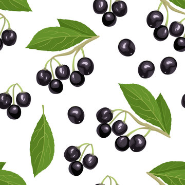 Maqui berry seamless pattern on white background. Branch of fresh healthy berries and green leaves. Vector illustration of superfood in cartoon flat style. Aristotelia chilensis or Chilean wineberry.