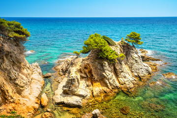 Fototapete - Cliffs with green trees in sea