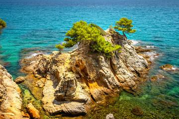 Fototapete - Cliffs in the sea. Mediterranean sea.