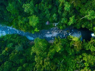 Top aerial view of river Forest landscape with trees and road. Bengkulu, Indonesia