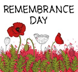 Vector illustration, poster or banner of remembrance day of Canada with poppy flowers background.