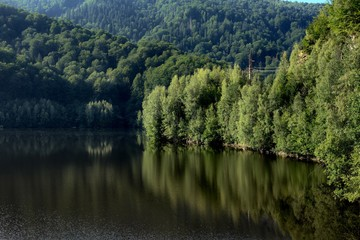 Forest Reflection On Alpine Lake Of Romania
