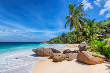 Photo sur Plexiglas Plage Exotic Sunny beach and coconut palms on Seychelles. Summer vacation and tropical beach concept.